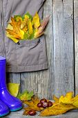 Autumn clothing with leaves on wooden boards