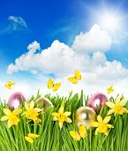 Flower Field With Narcissus And Easter Eggs In Green Grass