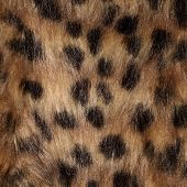Fur close up as background