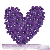 Abstract Magic  Violet Heart On A White Background