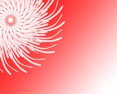 Abstract Magic White Twirl On Red Background