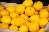 Lemons Pile In A Market