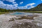 Green Spring, Black Sand Basin, Southwestern Upper Geyser Basin,
