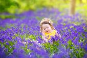 Adorable toddler girl playing with purple bluebell flowers