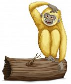 Illustration of a single gibbon on a log