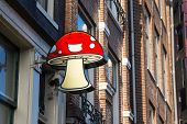 AMSTERDAM - AUGUST 29: Signboard of a smartshop selling mushrooms on August 29, 2014 in Amsterdam. Dutch smartshops legally sell specific mushrooms (also called: paddo's) as soft drugs.