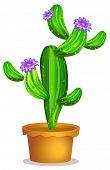 Illustration of a cactus plant in a pot on a white background