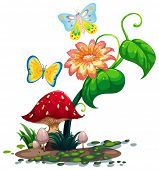 Illustration of a big flower near the mushroom with two butterflies on a white background