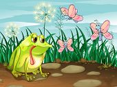 Illustration of a frog and the three butterflies