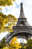 Постер, плакат: Famous Eiffel Tower In Autumn