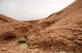 Desert Canyon In Israel Dead Sea Travel Attraction For Tourists