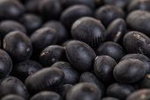 Macro Texture Of Black Soy Beans