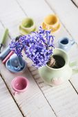 pic of crockery  - Fresh spring flowers and kid - JPG