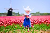 picture of national costume  - Adorable curly toddler girl wearing Dutch traditional national costume dress and hat playing in a field of blooming tulips next to a windmill in Amsterdam region Holland Netherlands - JPG