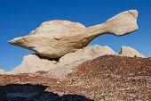 Flying Turtle bizarre Felsformation auf Bisti Badlands, New mexico