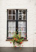 Window With Garden In Brugge