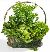 Raw Lettuce And Celery In A Basket