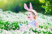 foto of bunny ears  - Adorable curly toddler girl wearing bunny ears playing with Easter eggs in a white basket sitting in a sunny garden with first white spring flowers