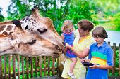 picture of mother baby nature  - Happy family young mother with two children cute laughing toddler girl and a teen age boy feeding giraffe during a trip to a city zoo on a hot summer day - JPG