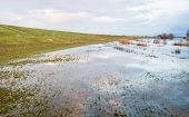stock photo of flood  - High water floods the grass next to the newly constructed embankment and the mirror smooth water surface reflects the colorful clouded sky. ** Note: Shallow depth of field - JPG