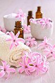 Towel Spa. Flowers Pink Hyacinth.