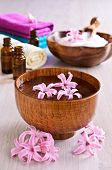 Flowers Pink Hyacinth. Spa.