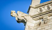 image of gargoyles  - A stone gargoyle on a Welsh church tower on a bright summers day