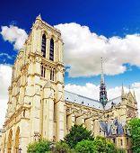 Notre Dame De Paris Cathedral, Garden With Flowers.paris. France.