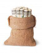 Vertical Money In The Bag