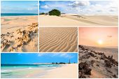 Picture Montage Of Boavista Island Landscapes  In Cape Verde Archipel