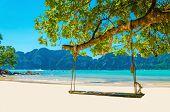 image of phi phi  - Swing hang from coconut tree over beach - JPG