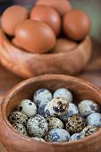 picture of quail egg  - Fresh chicken eggs and quail eggs at wooden plate closeup - JPG