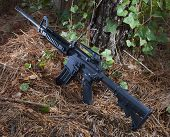 foto of pine-needle  - Short black rifle staged to move in a forest with pine needles - JPG