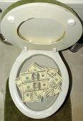 Money Down The Toilet
