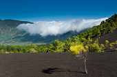 Beautiful Lava Landscape On The Cumbre Nueva In La Palma