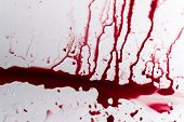 Постер, плакат: Vibrant Blood Splat On White Bath Porcelain