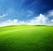 stock photo of blue sky  - green field and blue sky - JPG