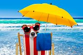 Close Up Of  Jack Russell Dog Resting And Relaxing On A Hammock Or Beach Chair Under Umbrella At The poster