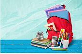 Back School Backpack Back To School Art Objects School Background Color poster
