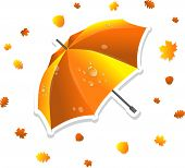 Open umbrella and leaves, vector illustration