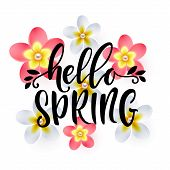 Hello Spring Hand Drawn Lettering. Greeting Card Design On A Background With Frangipani Flowers. Vec poster