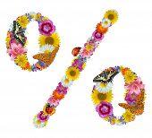 por cento sinal de flores, borboletas e joaninha