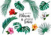 Vector Tropical Leaves Hibiscus Flower Blossom Summer Set. Isolated Background Illustration. Jungle  poster