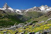 view of the Matterhorn and Ober Gabelhorn - Swiss Alps