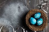 Easter Eggs In Nest Painted By Hand In Blue Color On Dark Background With Copyspace. Chicken And Qua poster