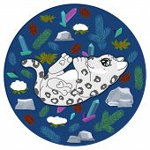 Cute Snow Leopard Kitten With Spruce Branches, Crystals, Stones, Cones, Snow Covered Bush On Dark Bl poster