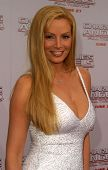 LOS ANGELES - JUN 18: Cindy Margolis at the premiere of 'Charlie's Angels: Full Throttle' on June 18, 2003 in Los Angeles, California