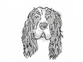 Retro Cartoon Style Drawing Of Head Of A English Cocker Spaniel, A Domestic Dog Or Canine Breed On I poster
