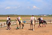 Cossacks On Horses