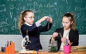Pupils Cute Girls Use Test Tubes With Liquids. Chemical Experiment Concept. Safety Measures For Prov poster